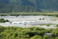 区农厂山帐篷 免版税库存照片
