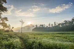 区域在Suoi近Tia Ho Tuyen Lam湖,大叻市城市,越南 库存照片
