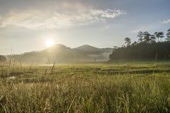 区域在Suoi近Tia Ho Tuyen Lam湖,大叻市城市,越南 免版税库存照片