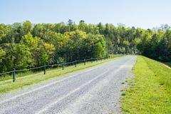 区域的风景在长的杉木水库附近的在Michaux Stat 库存图片