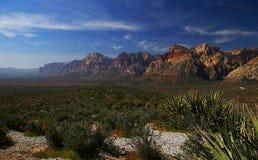 区峡谷保护国家内华达红色岩石 免版税库存图片