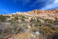 区峡谷保护国家红色岩石 免版税图库摄影