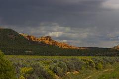 区峡谷红色犹他 库存照片