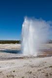 区忠实的喷泉老黄石 图库摄影