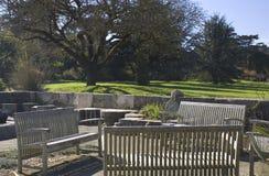 区植物的弗朗西斯科从事园艺露台圣 免版税库存图片