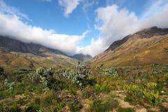 区美丽的高涨山理想的风景雪靴 免版税库存图片