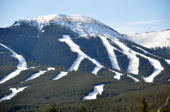 区nakiska滑雪 库存照片