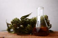 医学医药大麻绿色叶子与萃取物的在一张木桌上上油 免版税库存照片