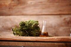 医学医药大麻绿色叶子与萃取物的在一张木桌上上油 图库摄影