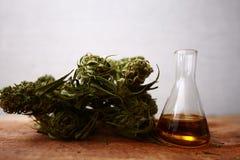 医学医药大麻绿色叶子与萃取物的在一张木桌上上油 库存照片