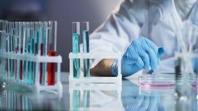 医学家举办的测试,观察在玻璃烧瓶的反应,研究 免版税库存照片