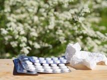 医学药片,在桌上的手帕在绿色自然背景 免版税库存照片