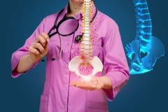 医治与放大镜审查脊椎的疾病 库存照片