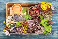 医治草本和花在盘子、蜂蜜和清凉茶 免版税图库摄影