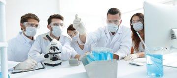 医生与试管和显微镜一起使用在实验室 免版税库存照片