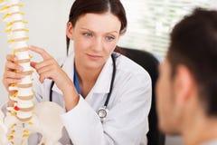 医生女性耐心的显示的脊椎 库存图片