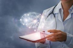医生显示脑子的模型在虚屏上的 库存照片