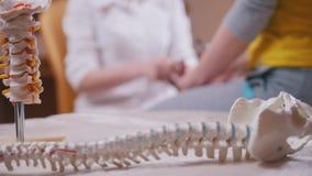 医生神经学家审查小心地敲击与锤子在胳膊,在前景的脊椎模型的患者 影视素材