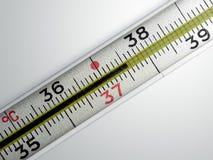 医疗温度计 免版税库存图片