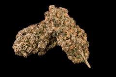 医疗的大麻 免版税库存图片