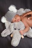 大象服装的新出生的男婴 免版税库存照片