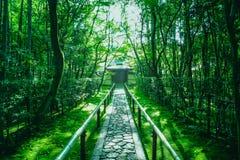十三弦琴在Daitokuji寺庙Daitoki籍的Kotoin寺庙在京都,日本 库存图片
