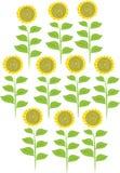 十个向日葵的风格化例证 库存图片