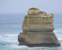 十二使徒岩,大洋路,南维多利亚 免版税库存图片