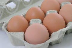 十二半的鸡蛋 免版税库存图片