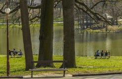 十几岁在公园 免版税库存照片