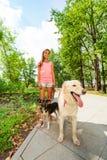 十几岁的女孩步行狗在公园 免版税库存图片