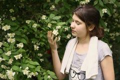 十几岁的女孩气味在灌木的茉莉属花 免版税库存图片