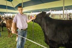 十几岁的男孩和一头黑牛肉小牝牛 免版税库存照片