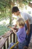 十几岁的男孩和兄弟大厦一起树上小屋 免版税库存照片
