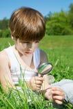 十分地审查蒲公英的开花的花逗人喜爱的男孩通过放大镜,当坐在草时 免版税库存照片