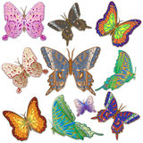 十只明亮的杂色的蝴蝶 免版税库存图片