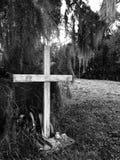 十字架和青苔 免版税库存照片