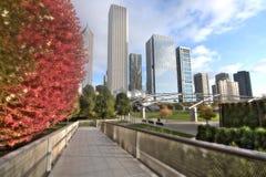 千禧公园在芝加哥 免版税图库摄影