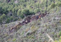 直升机失事在马略卡西班牙海岛  库存照片