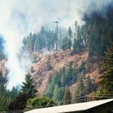 直升机战斗的森林火灾用水 免版税库存照片