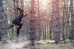 升空,帽子的一个巫婆在笤帚,自由空间飞行 免版税库存图片