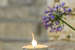 升蜡烛和爱情花花 库存照片