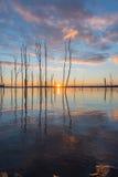 升起在一个湖的太阳在新泽西 免版税库存图片