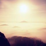 午夜 在漂泊萨克森瑞士的一座美丽的山的满月夜 多小山峰顶和树从大雾增加了 图库摄影