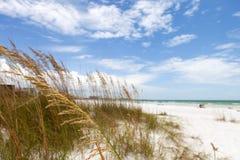 午睡关键海滩萨拉索塔佛罗里达 免版税库存照片