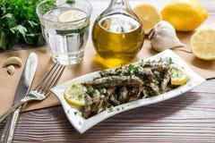 午餐的新鲜的沙丁鱼 库存图片