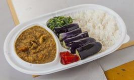 午餐盒油煎的茄子、菠菜、咖喱用辣椒和平原 免版税库存图片
