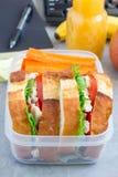 午餐盒用鸡丁沙拉三明治和红萝卜,垂直 库存图片