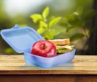 午餐盒 库存图片
