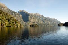 半信半疑的声音-新西兰 库存图片